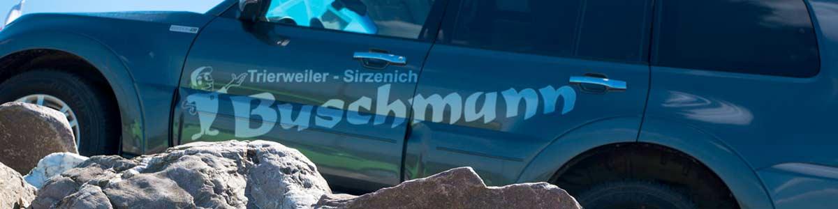 Autohaus Trierweiler Mitsubishi Buschmann KfZ-Werkstatt alle Marken
